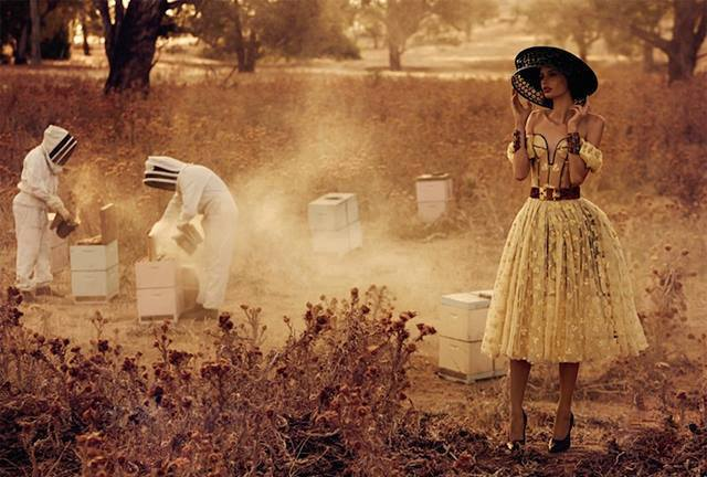 Beekeeping as a new hobby